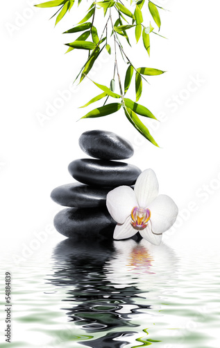 Foto op Canvas Ontspanning white orchid flower end bamboo