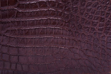 skin crocodile textured brown leather