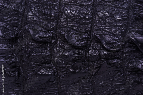 Poster skin crocodile textured black leather