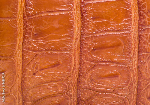 Poster skin crocodile textured leather brown