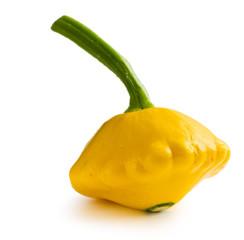 yellow patisson