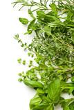 Fototapety various herbs