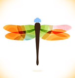 Vector multicolor isolated dragonfly