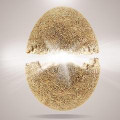 egg concept 3d background