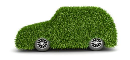 Green grass car front