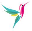 Hummingbird - 54911451