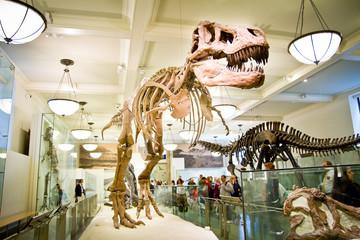 Metropolitan Museum of Art, May 15, 2011 in New York