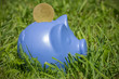 Blue piggy on the grass