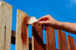 Painting wooden fence - 54928848