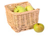 Basket with the green apples