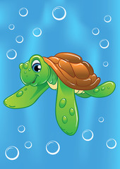 funny little turtle in the ocean water