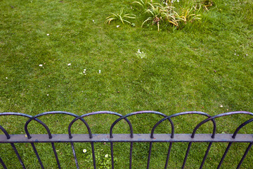 Grass behind small fence