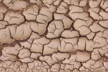 Barro seco agrietado, textura natural, sequía.