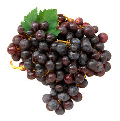 Uva nera - Black grapes