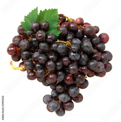 Uva nera - Black grapes