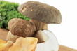 Porcini and Chanterelle Mushroom