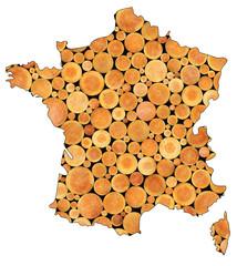 Carte de france, industrie du bois, sylviculture
