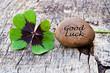 vierblättriges Kleeblatt mit Stein auf Holz, Good Luck