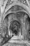 Ancient gothic cloister in black and white