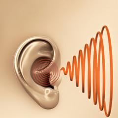 Ohr -  schall - 3D Render