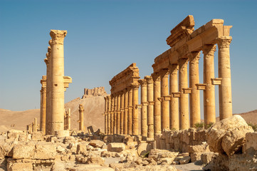 Palmyra Temple Ruins