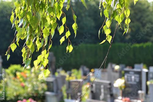 canvas print picture Cemetery scene