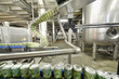 Green cans go on conveyor in factory