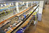 Top view of conveyor with beer in factoty