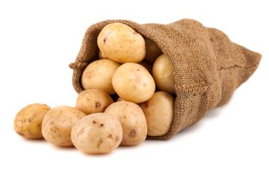 Burlap sack with potato