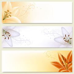 Floral banners with lilies. Vector illustration.