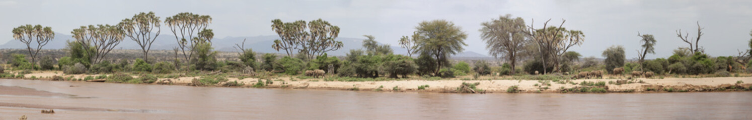 Panoramic view of Samburu National Park in Kenya