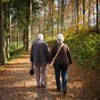 Altes Ehepaar beim gemeinsamen Waldspaziergang