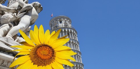 Pisa - schiefer Turm mit Sonnenblume