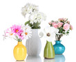 Beautiful flowers in vases isolated on white