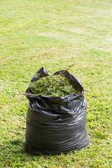 Grass in garbage bag