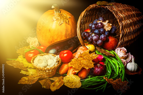 Beautiful autumn harvest of vegetables
