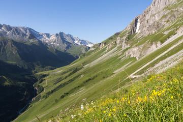 Vallée de chavière - versant fleuri et sommets