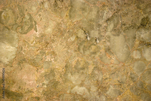 Decorative wall tiles with fossil effect gray and beige marble