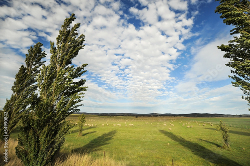 typical rural scenery in Australia, with beautiful clouds in blu