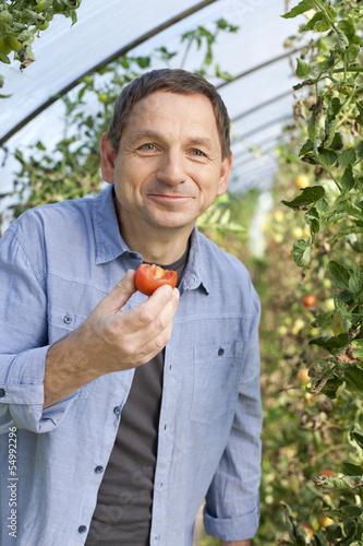 Deutschland, Sachsen, Erwachsene probieren Tomaten auf dem Bauernhof