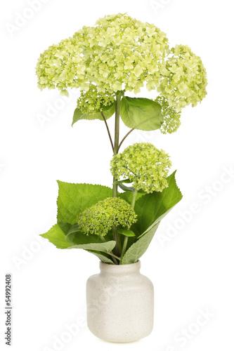 Green flower concept