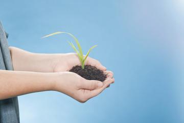 Mädchen hält eine Pflanze