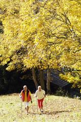 älteres Paar, Senioren Nordic Walking im Freien
