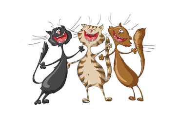 Three happy cats on isolated white background