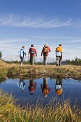 Österreich, Salzburger Land, Wanderer in Landschaft, Rückansicht