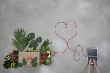 Laptop und Gemüse sind durch ein Stromkabel verbunden