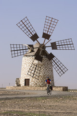 Spanien, die Kanarischen Inseln, Mann Mountainbiken, Windmühle im Hintergrund