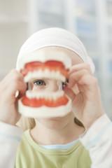 Deutschland, Bayern, Landsberg, Mädchen hält Modell von Zähnen