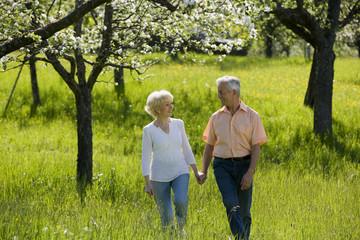 Deutschland, Baden Württemberg, Tübingen, älteres Paar, Senioren zu Fuß durch Feld