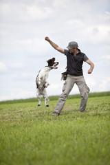 Deutschland, Niederbayern, Mann trainiert Hund, English Springer Spaniel auf Wiese